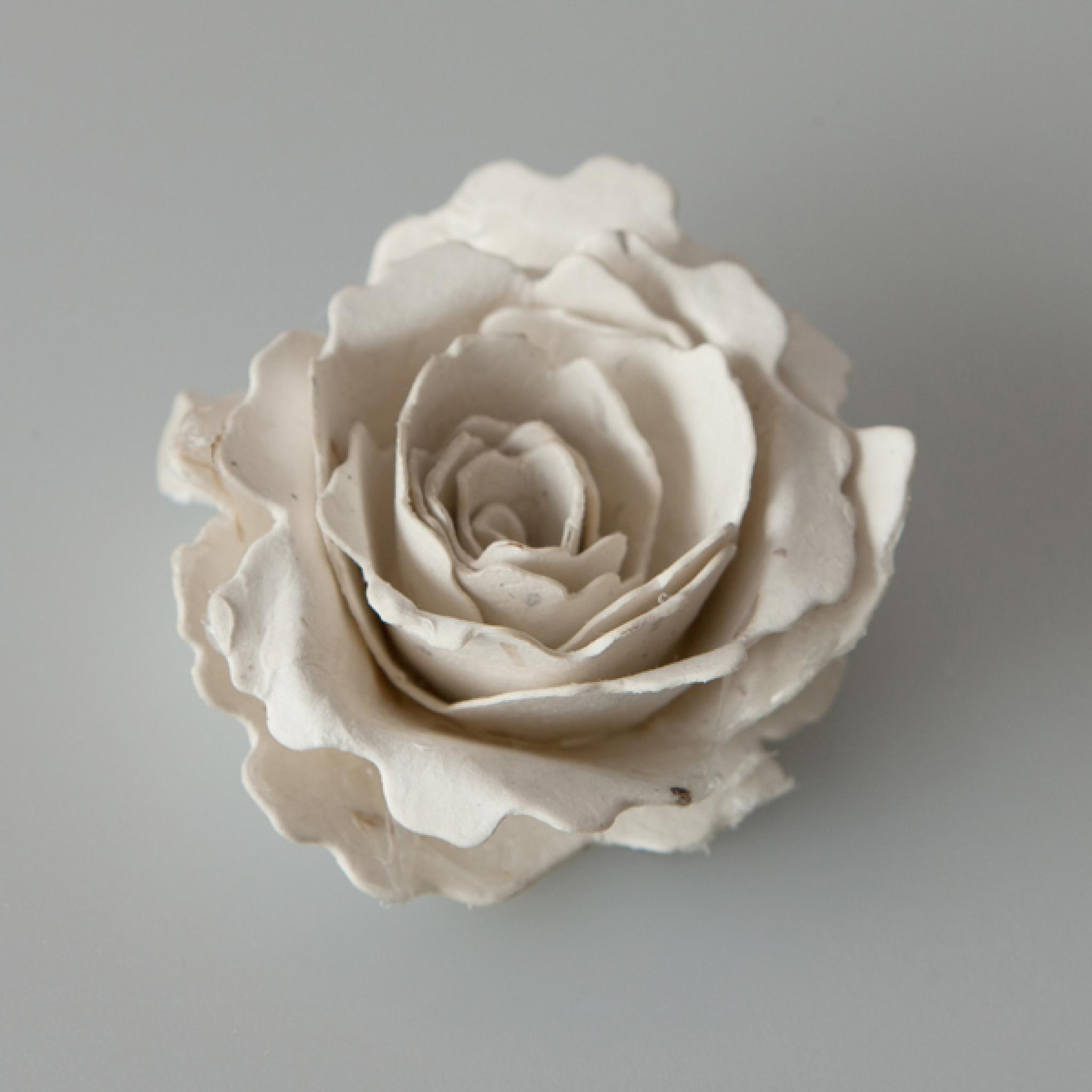 Handmade Seeded Paper Flower Corsage Kit Pack Of 5 Flowers