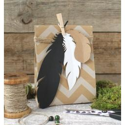 Card Feathers - Assorted colours x 9