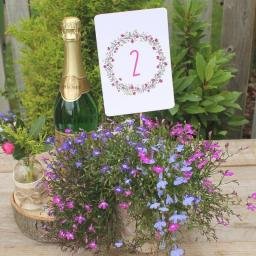 Floral Wreath PINK Table Numbers ( A6) numbers 1 -10