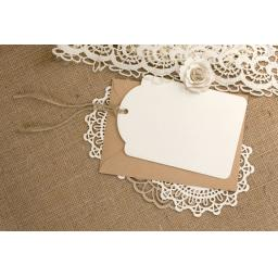Extra Large luggage tags x 50 (plain no print) without envelopes