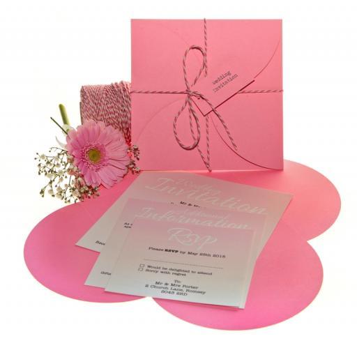 Pale Pink CD size petal wallets ( pack of 25)
